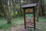 Lesní školka Na větvi