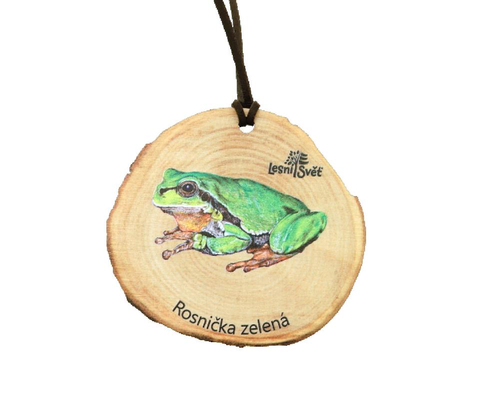 Dřevěná medaile letokruh rosnička