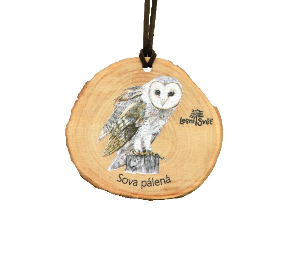 Dřevěná medaile letokruh sova pálená