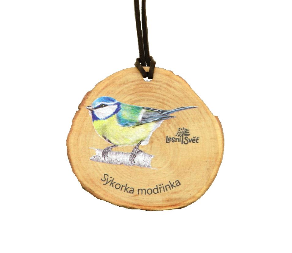 Dřevěná medaile letokruh sýkora modřinka