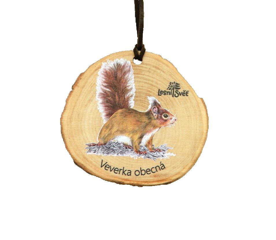 Dřevěná medaile letokruh veverka