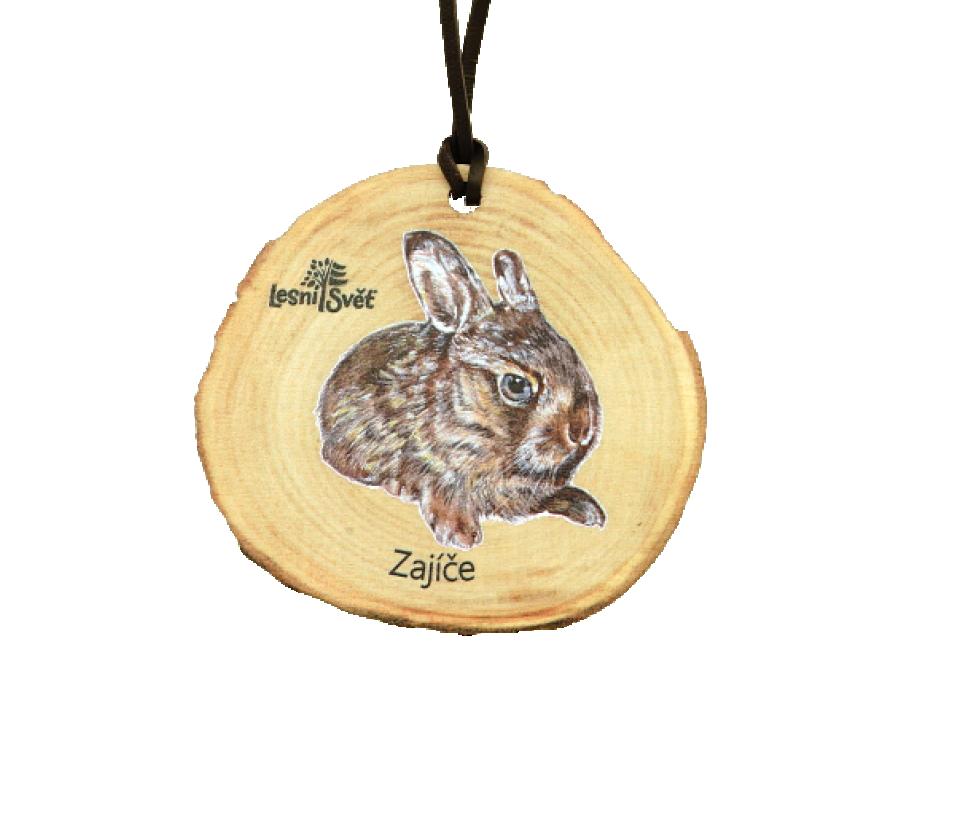 Dřevěná medaile letokruh zajíče