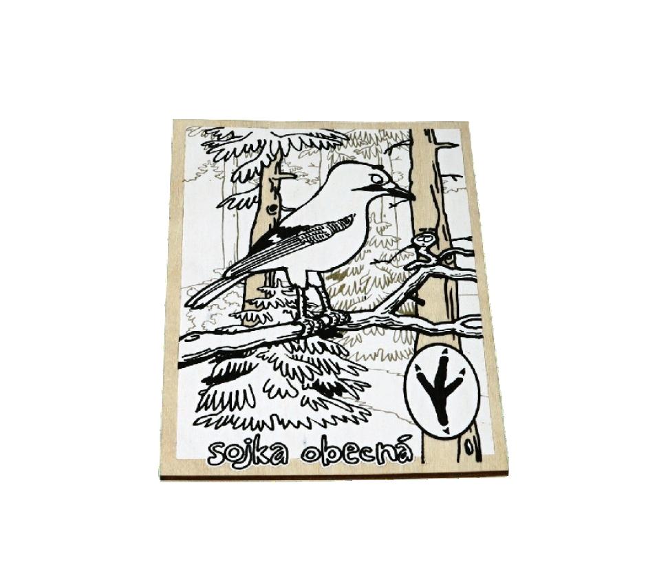 Dřevěná omalovánka - sojka