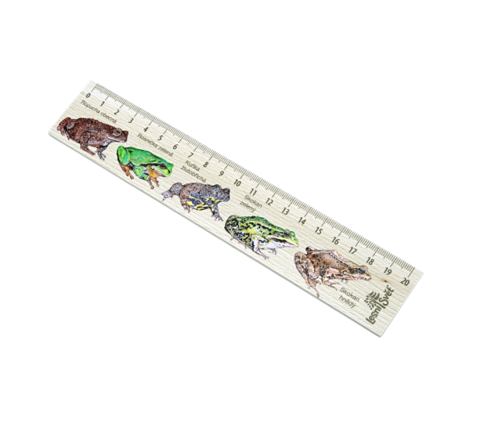 Dřevěné pravítko 20 cm žáby