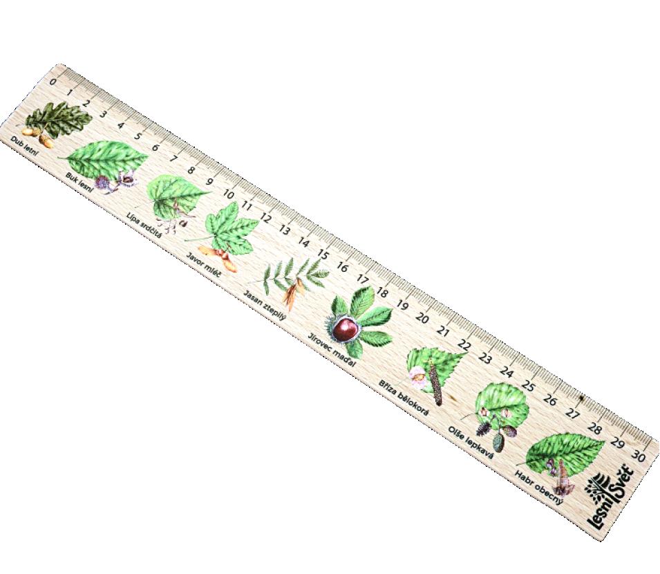 Dřevěné pravítko 30 cm listy
