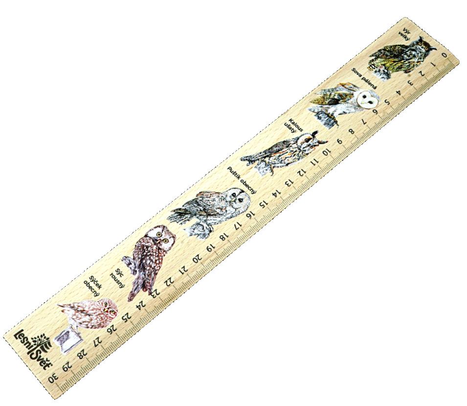 Dřevěné pravítko 30 cm sovy