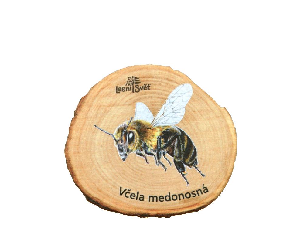 Magnet Letokruh včela