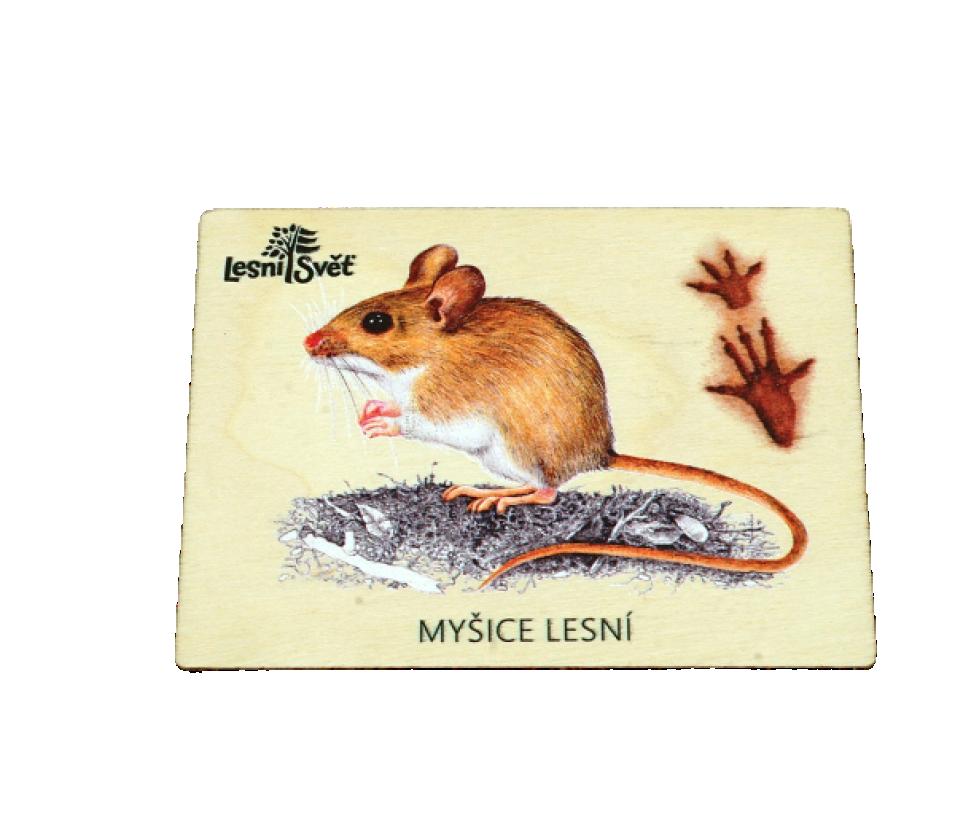 Magnet velký myšice
