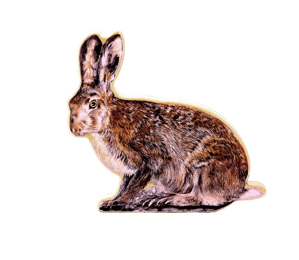 Makety zvěře - Zajíc