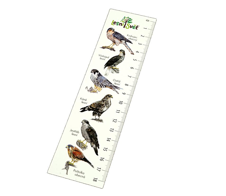 Papírová záložka s měřítkem - Krahujec