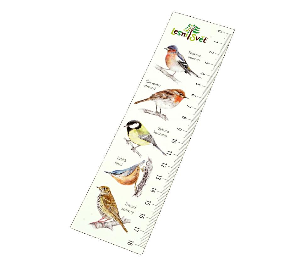 Papírová záložka s měřítkem - Pěnkava