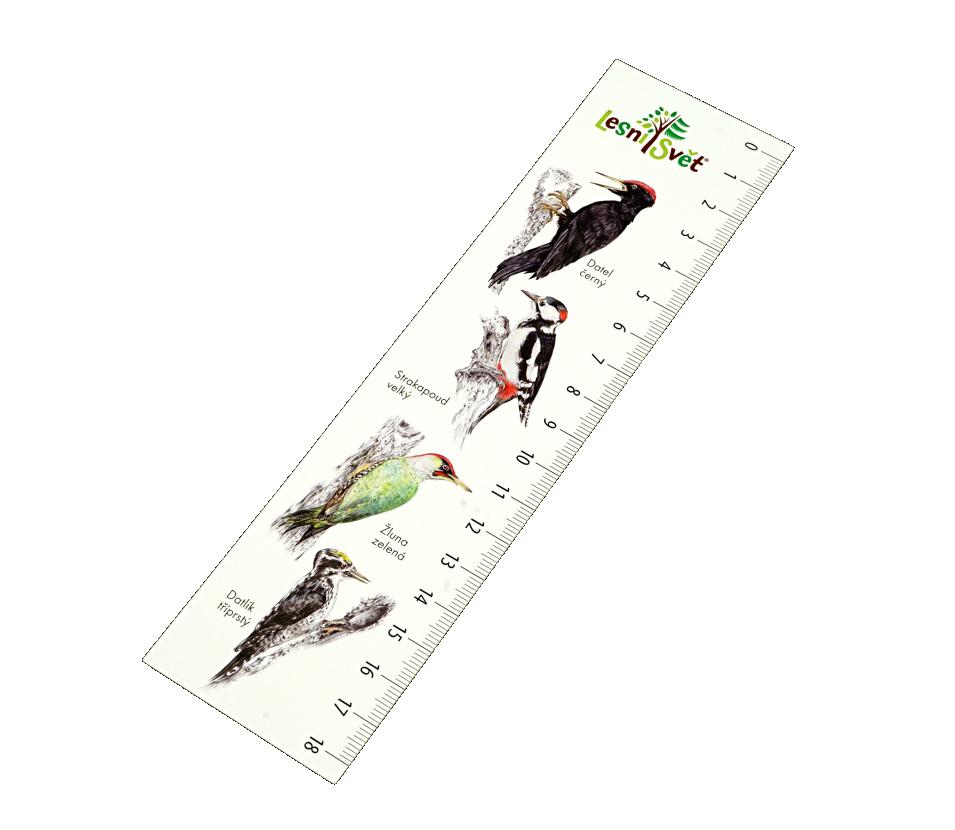 Papírová záložka s měřítkem - Šplhavci