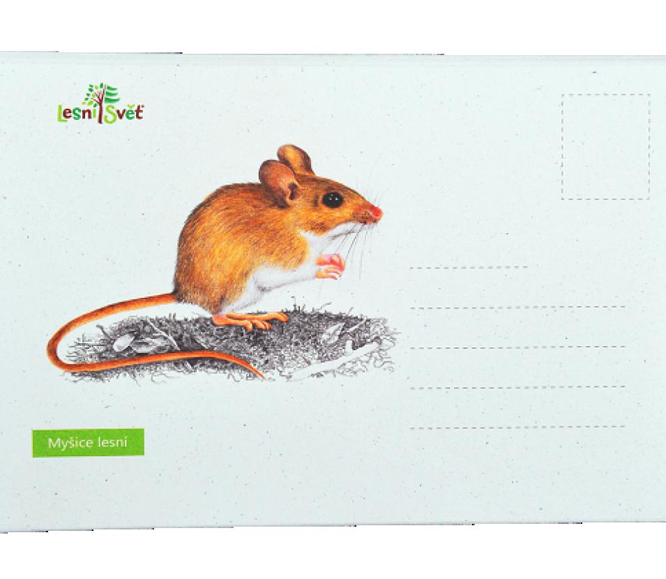 Puzzle do kapsy - Myšice