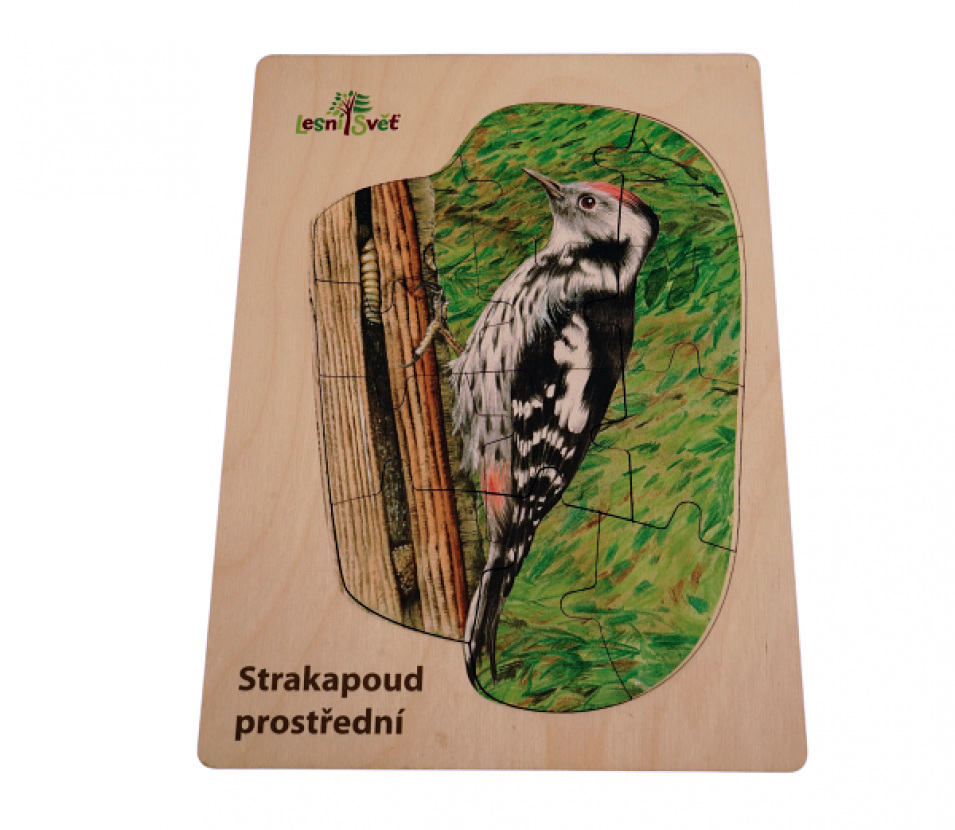 Puzzle z lesa strakapoud