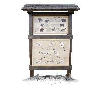 Kukátka - Zvířecí Stopy