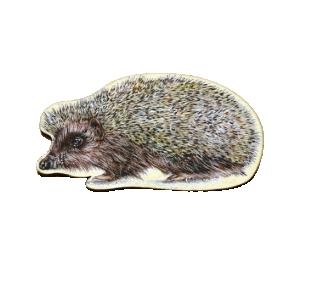 Magnet tvar ježek