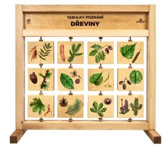 Tabulky poznání stolní - Naše dřeviny